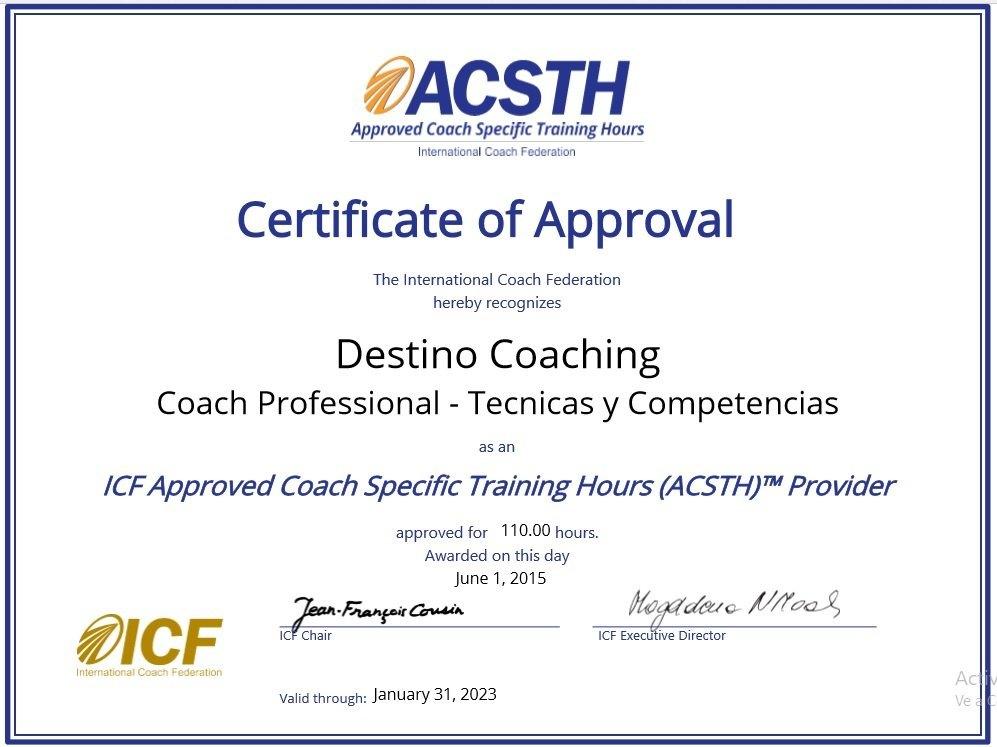 Coach Professional - Técnicas y Competencias
